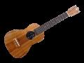 ukulele120